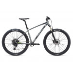 2020 GIANT TALON 29ER 1
